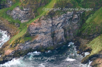 Aerial photography Scotland Troup Head Seabird colony