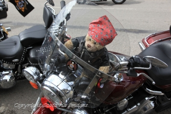 Aerial photography Scotland Harley Teddy